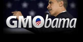 gmobama-and-the-monsanto-protection-act-L-F8pm8s