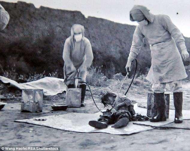 Unit 731-test bactériologique